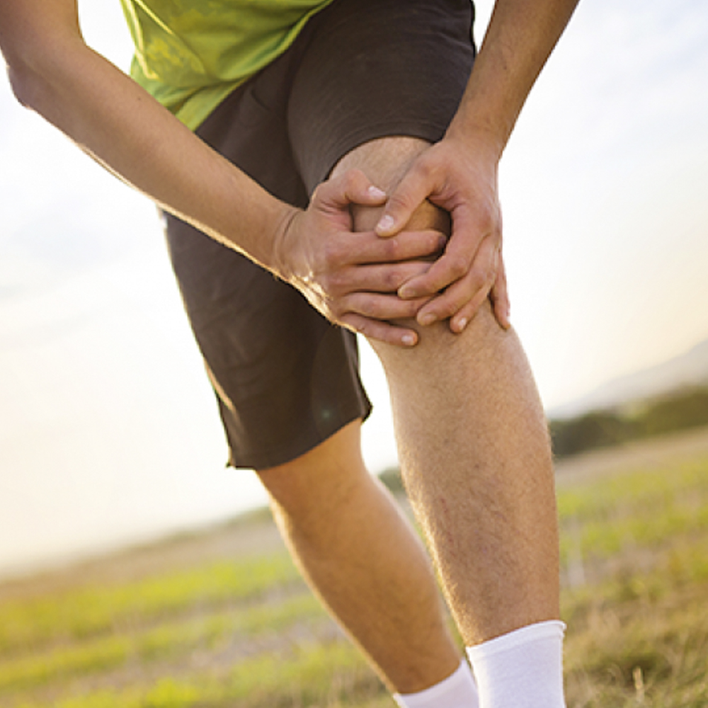 Meniscus injuries and knee and shoulder ligaments